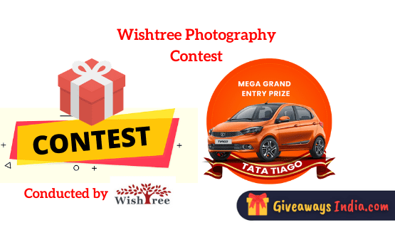 Wishtree Photography Contest